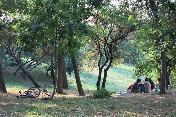 Tineretului Park, Bucharest. Info and photos.