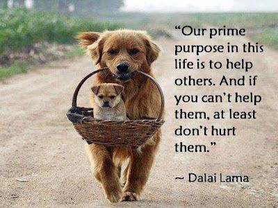 Our prime purpose in life is to help others.